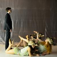 Euripides' Bacchae, translated by a senior Classics major and put on stage in April 2013 at the Fischer Center