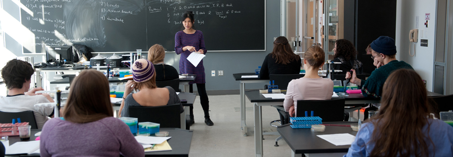 Instructors create a supportive and immersive teaching environment.