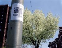 Main Street Poughkeepsie