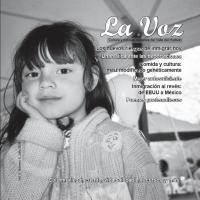 La Voz julio 2008